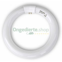 UV-Lamp rond - 32 Watt